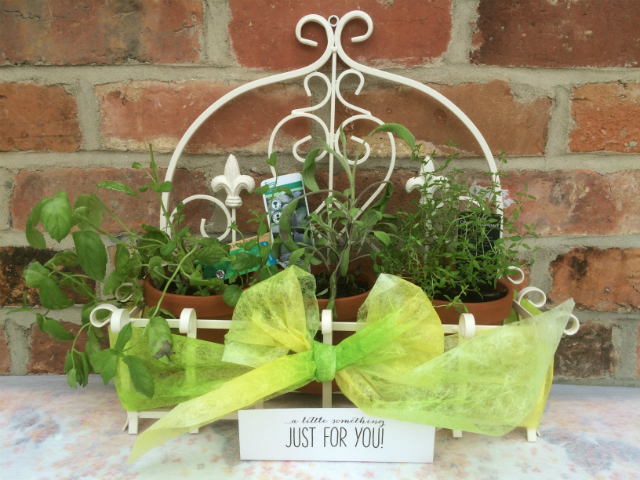 Three potted herbs in a white wrought iron frame wrapped in a large decorative bow made from Lutradur 30 which has been coloured with lime green transfer paint