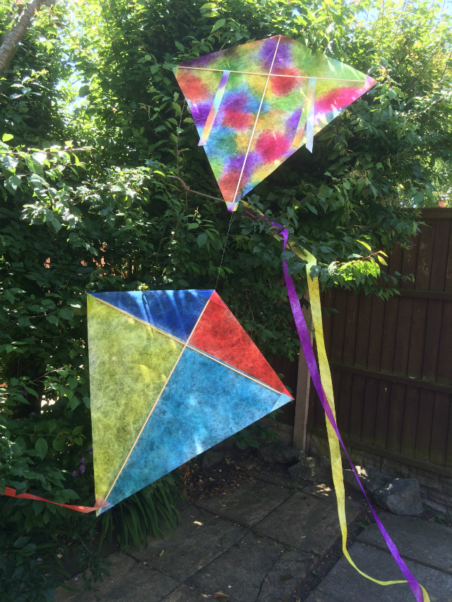 Two diamond shaped kites resting on tree branches, one multi coloured, the other divided into four coloured sections of yellow, dark blue, red and light blue.
