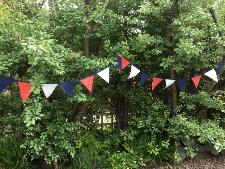 Red, white and blue bunting flags on a dark blue ribbon hung across some small trees.
