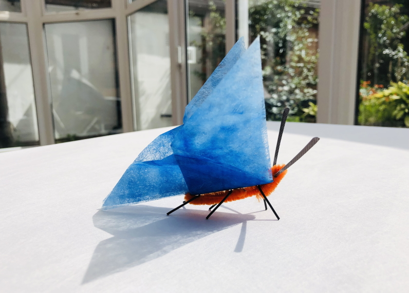 A brightly coloured blue butterfly with an orange body, black legs and antennae resting on a white table.